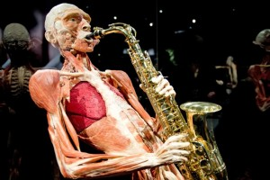 Body Worlds saxo